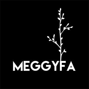 VDA Home Studio-Horvath Tamas-Meggyfa